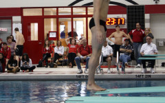 Three Sectional medals for boys diving
