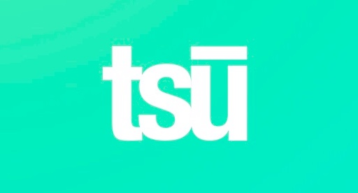 "Tsu is a new social networking app that introduces a reward method to users for ""organic"" posts.  It has been growing success for the corporation, as  there are over 1 million active users."