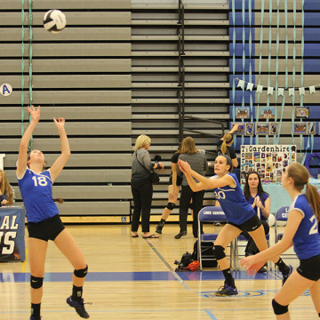 Mia DiNino (10) gets ready to set the ball. Nicole Dubish (10) and Kaylee Marovich (10) dove after the ball to volley it over the net.