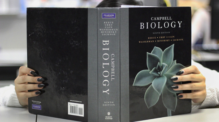 A student dives deep into her AP Biology textbook and studies before going to the AP conference. The conference takes place at Lake Central on April 9 from 7:50 a.m. to 12:40 p.m.
