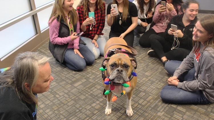 Students surround the dog, Daisy Mae, to take pictures of her in her costume. The lab occurred on Friday, Dec. 16.