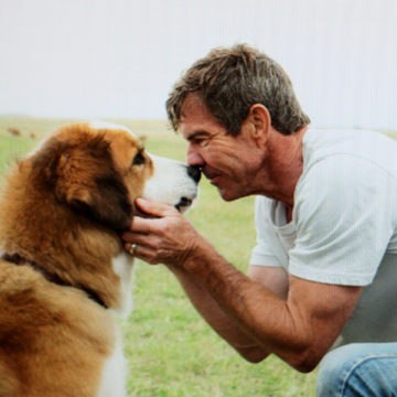 Ethan (Dennis Quaid) looks into Ellie's eyes.  This was the point when Ethan knew Ellie wasn't just another dog, she was Bailey.