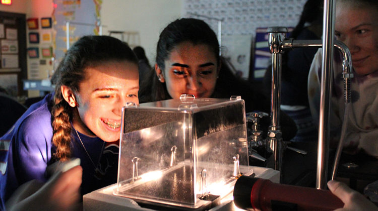 Students look into a box to see if there is any action of radioactive waves. The students looked at the lab with the lights off to see the progress waves made.